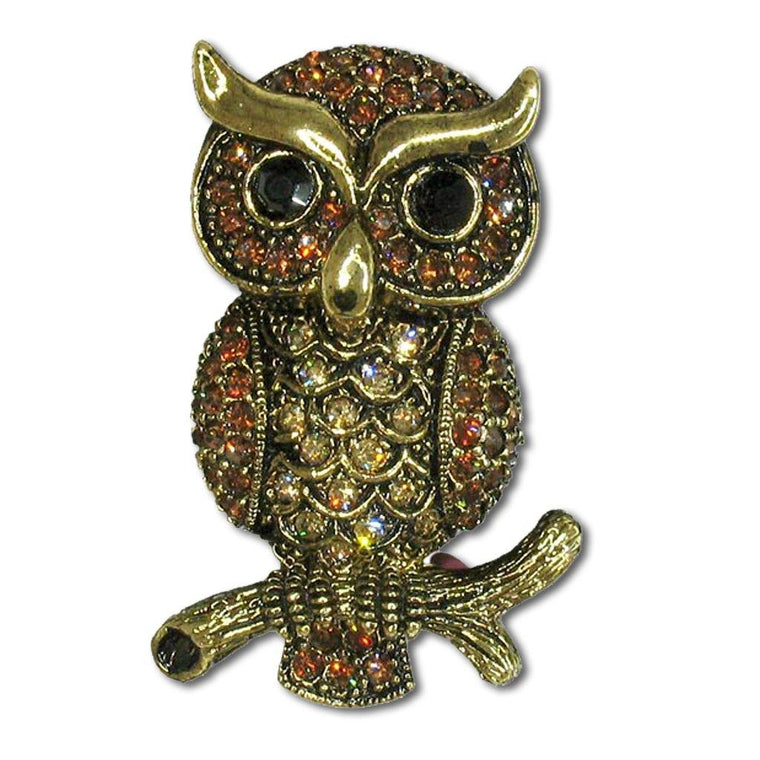 Owl Crystal Pin