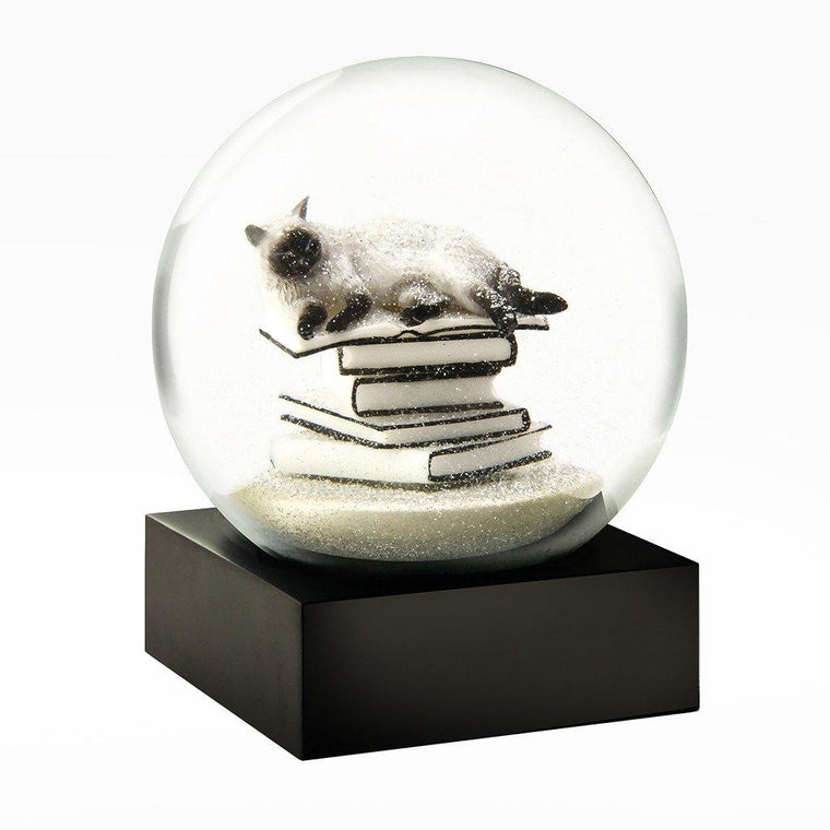 Cat on Books Snow Globe