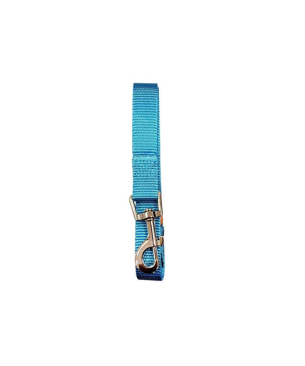 Standard Padded Grip Leash Light Blue Lead and Collar