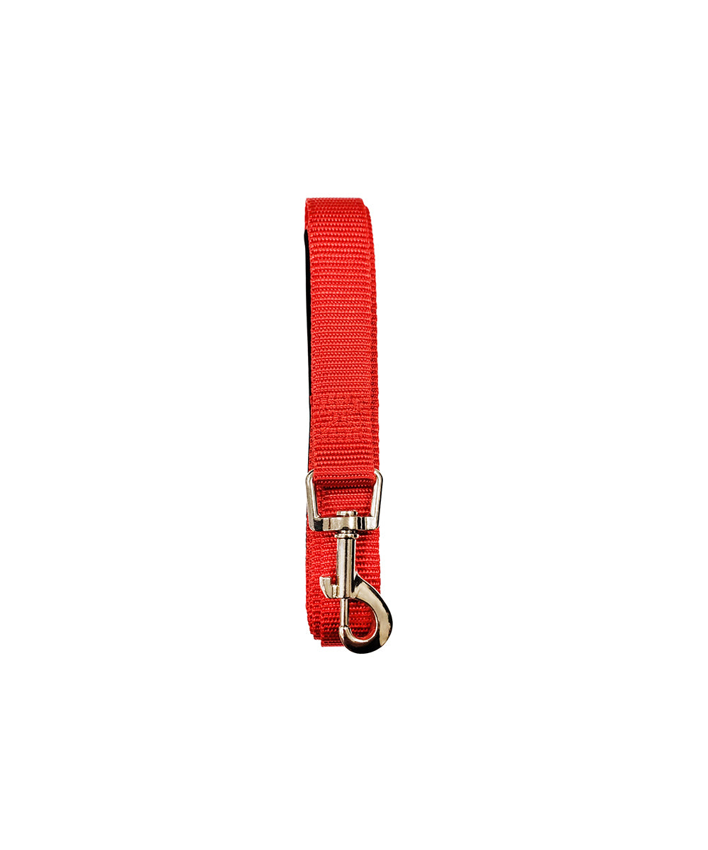 Standard Padded Grip Leash Red Lead and Collar
