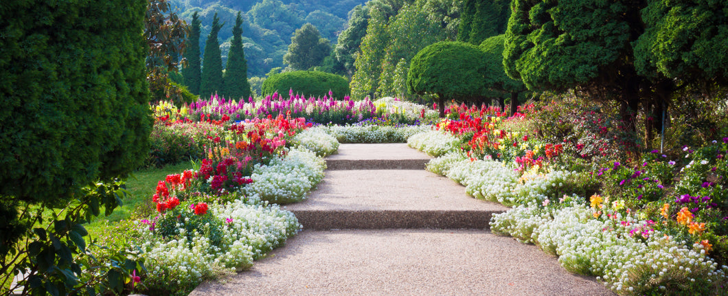 8 Tips for Putting Together a Visually Appealing Flower Garden