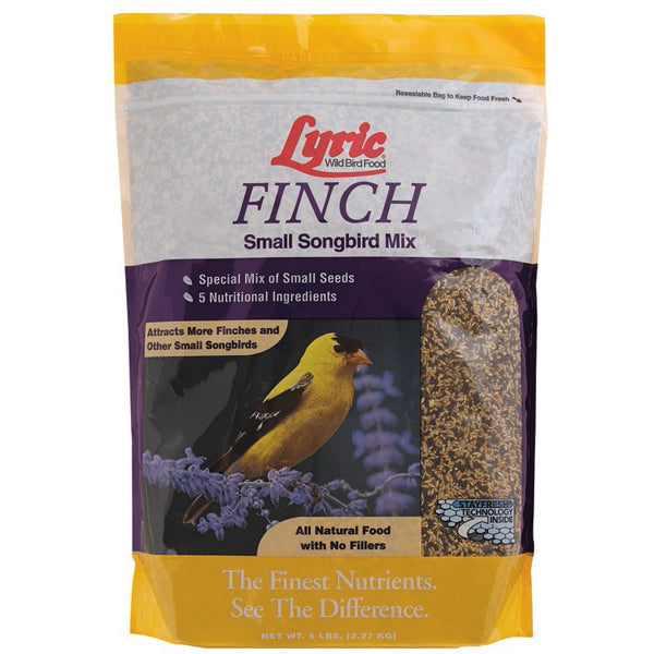 Lyric Finch Small Songbird Mix