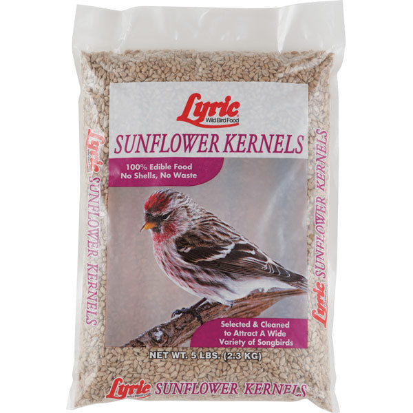 Lyric Sunflower Kernels for Wild Birds