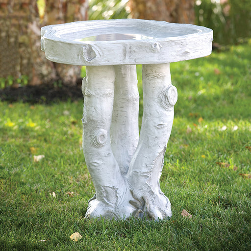 Birchwood Birdbath