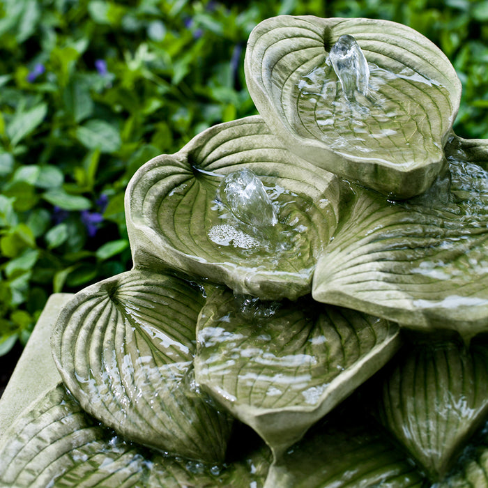 Cascading Hosta Fountain