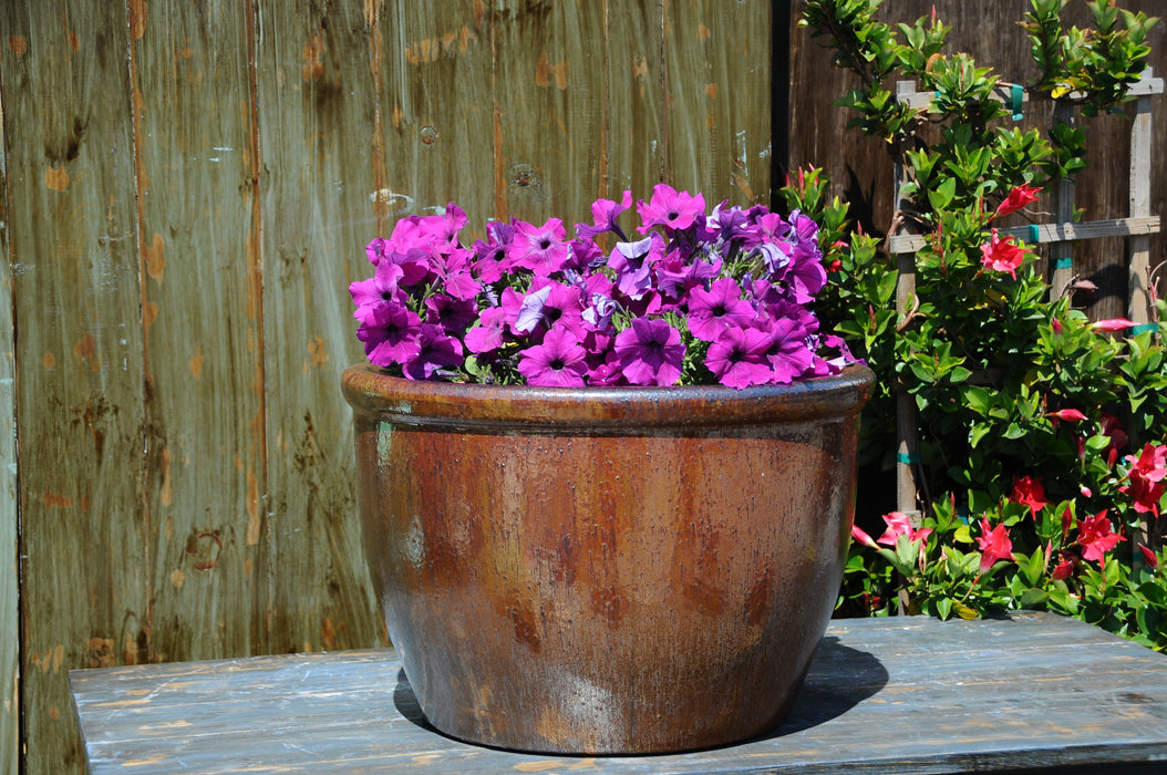 Low Cana Garden Planter