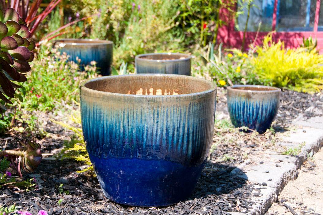Pacific Lily Planter 888128