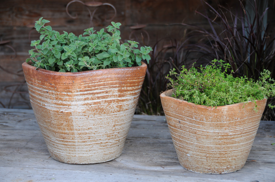Square Shaped Pots #50066