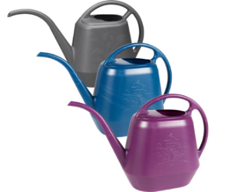 Aquarite Watering Can