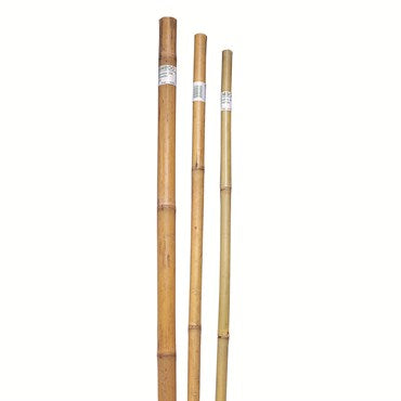 Bond Bamboo Super Poles