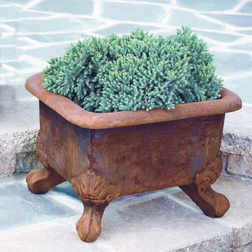 Basin Planter with Feet
