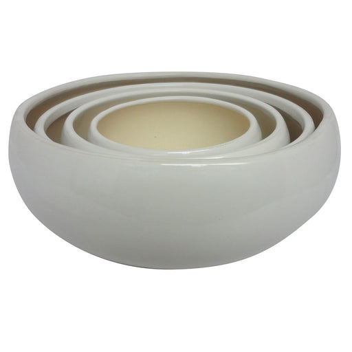 Succulent Bowl (White)