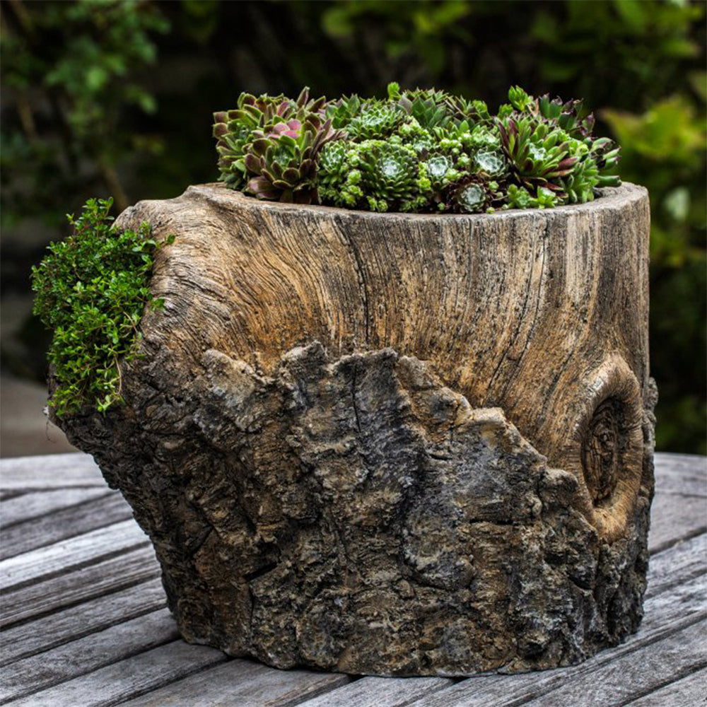 Walnut Planter