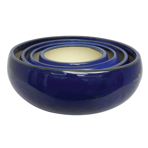 Succulent Bowl (Blue)