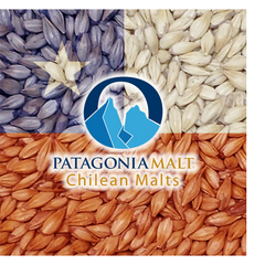 Patagonia - Chilean Malts