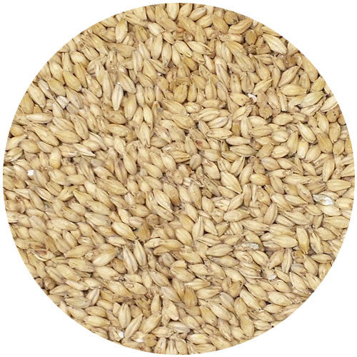 Briess 2 Row Brewers Malt 1.8L