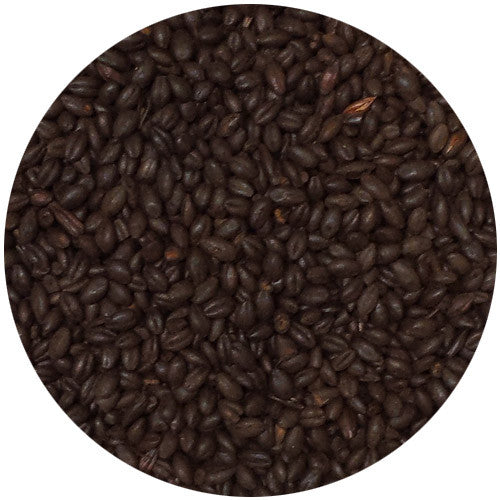 Briess Blackprinz Malt (Debittered) 500L