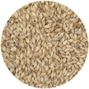 Castle Munich Light Malt 6L