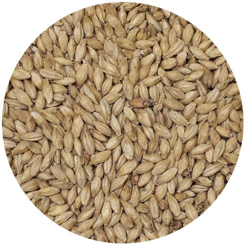 Malt Co of Ireland Ale Malt 2.8L