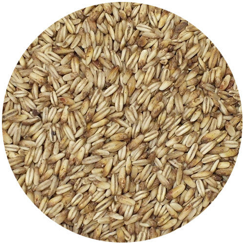 Simpsons Golden Naked Oats 10L