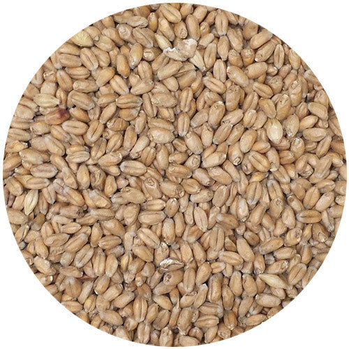 Weyermann Floor Malted Bohemian Wheat Malt 2L