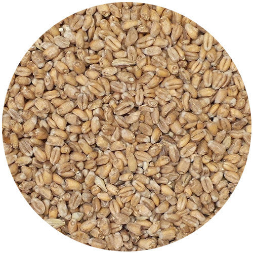 Weyermann Oak Smoked Wheat Malt 2.5L