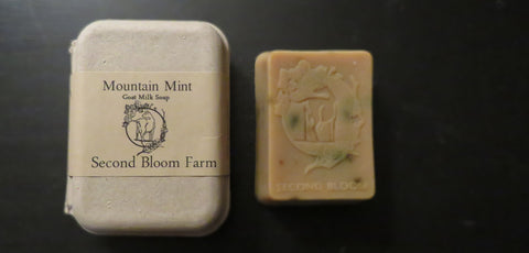 Mountain Mint Soap