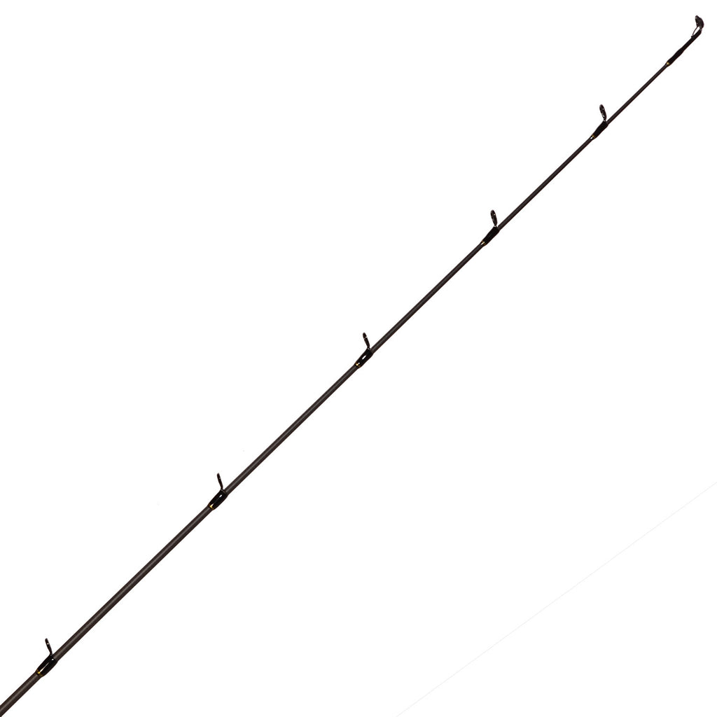Kayak Gold Series Spinning Rod