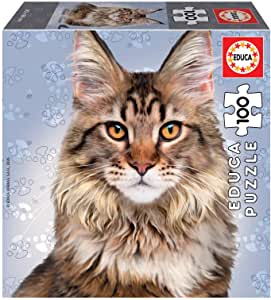 18805 Educa Maine Coon Cat