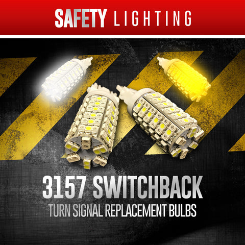 3157 Switchback Bulbs