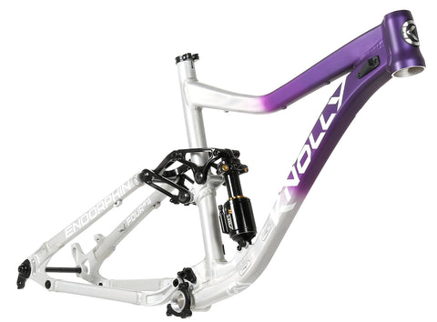 Endorphin Frame Purple Raw