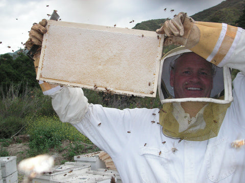 Bill's Bees Honey Frame