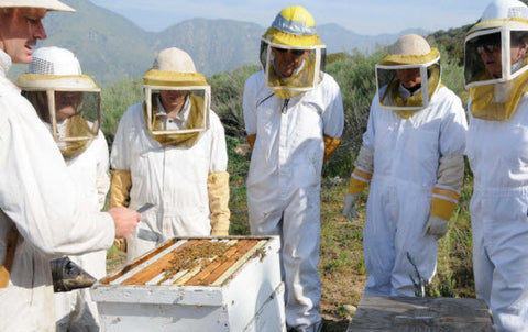 Los Angeles County Beekeepers Association Beekeeping Class 101
