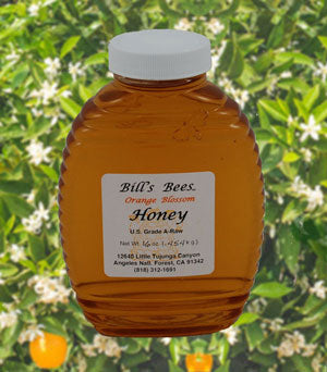 Bill's Bees Orange Blossom Honey