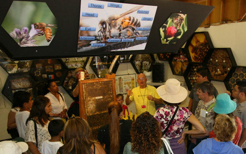 Clyde Steeses teaches at LA County Fair Bee Booth