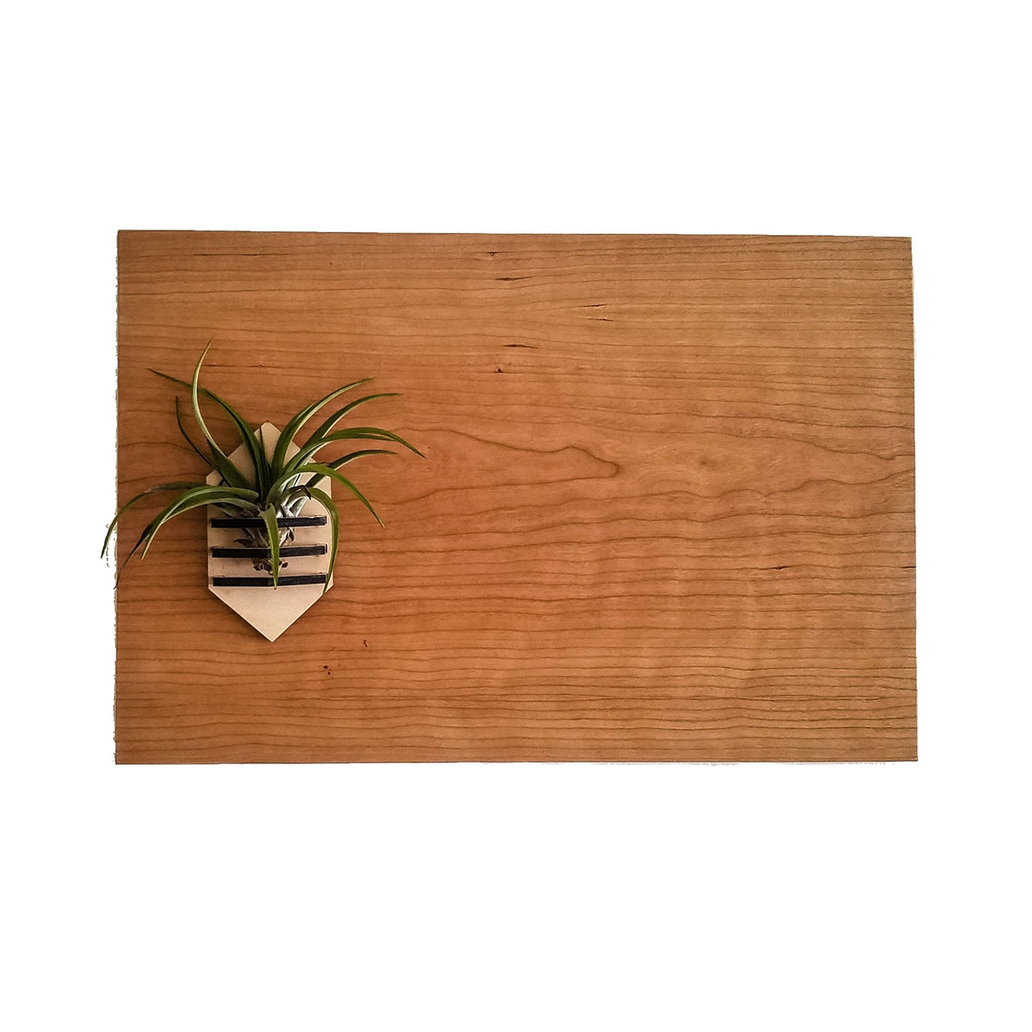Home Accessories - Cherry Wood Magnetic Bulletin Board -  - District 31