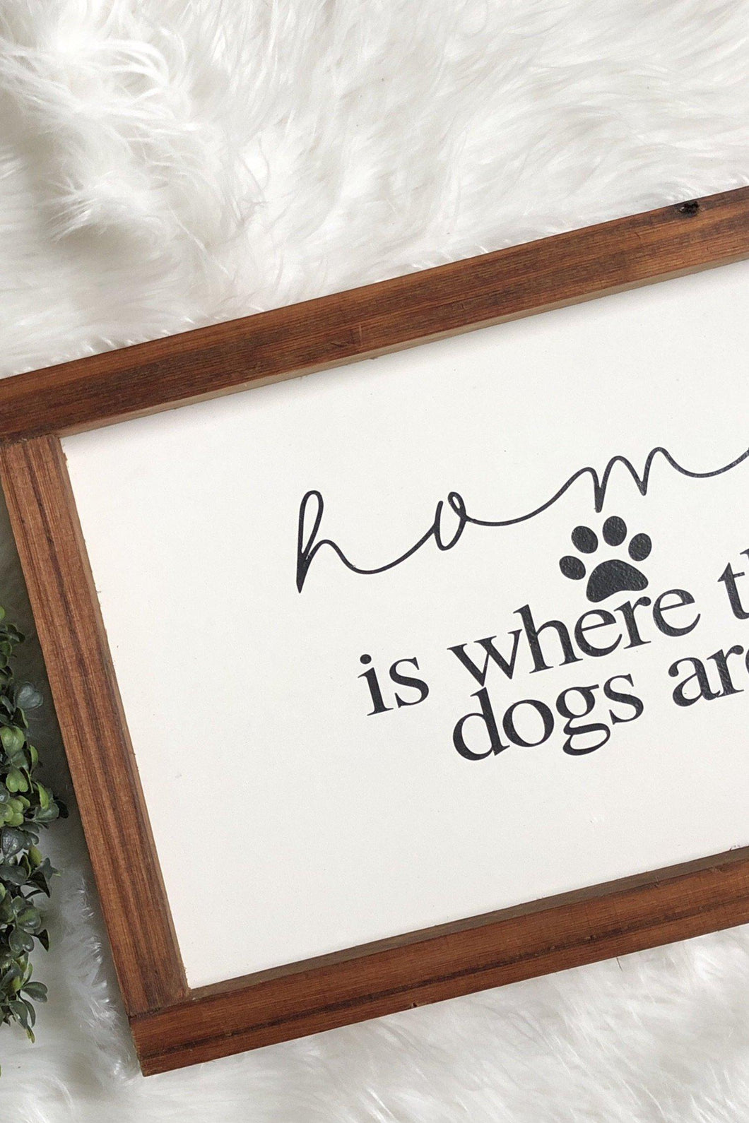 Homes is where the dogs are