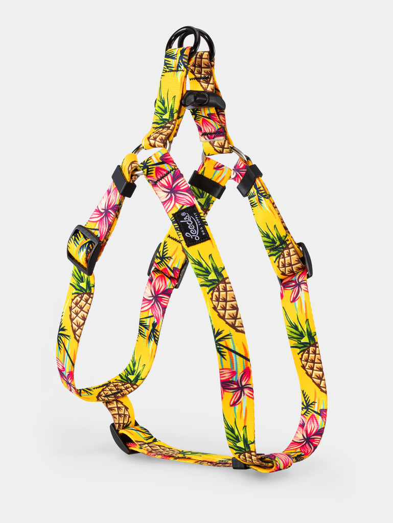 Luau Step In Harness