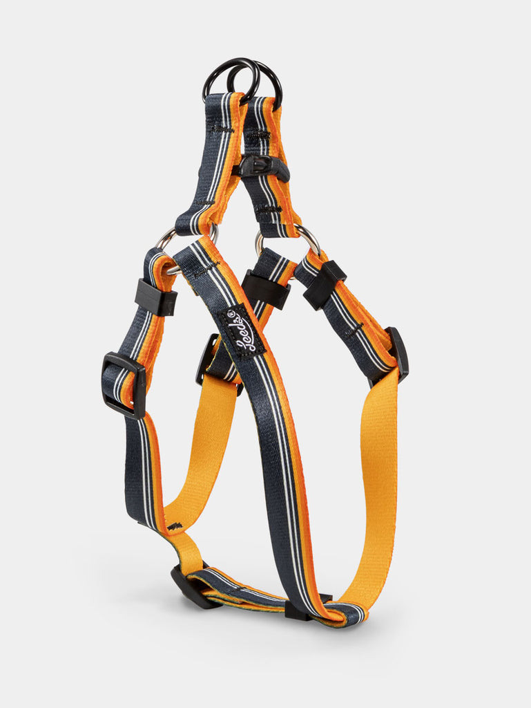 Jerry Step In Harness
