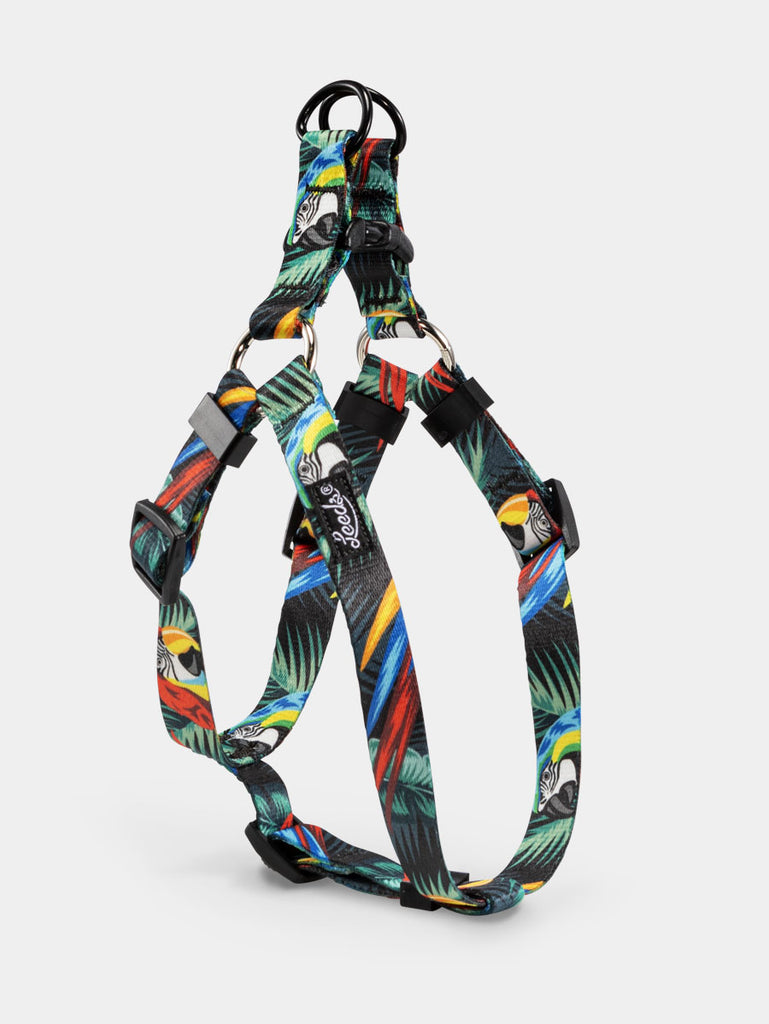Jimmy Step In Harness