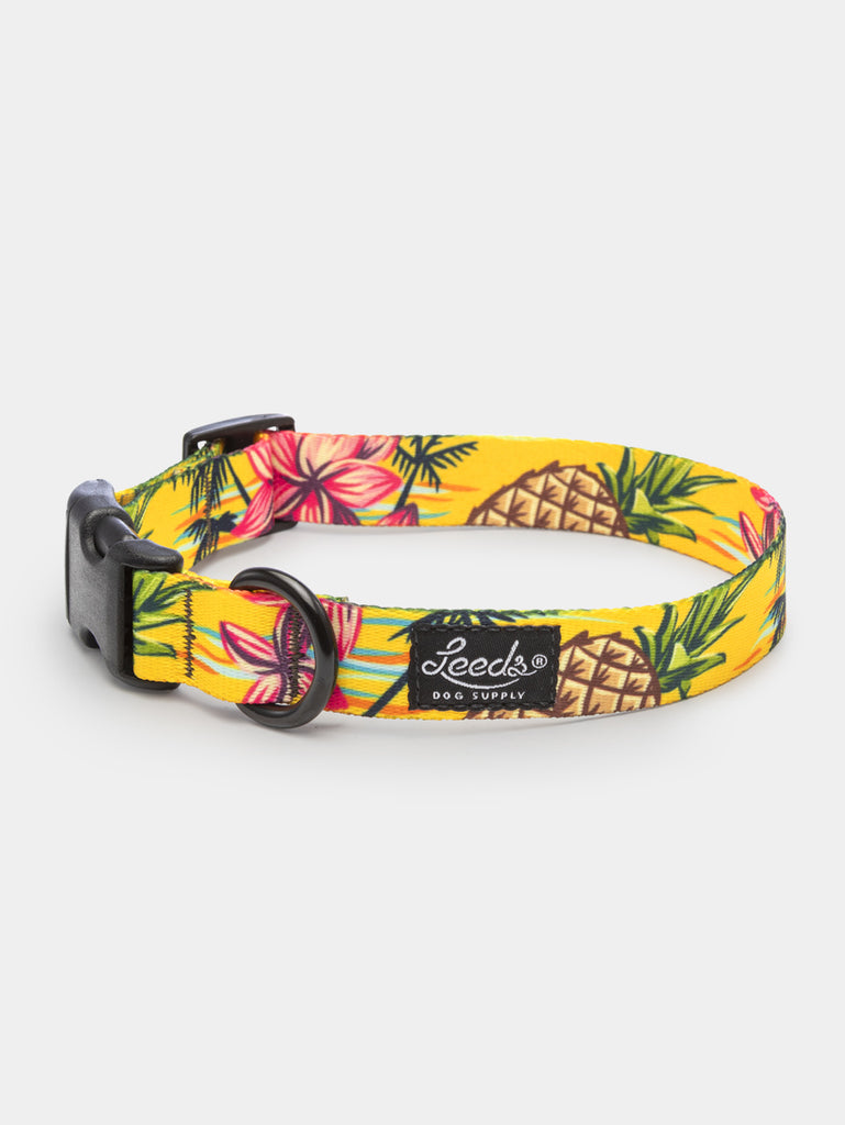 The Luau Collar
