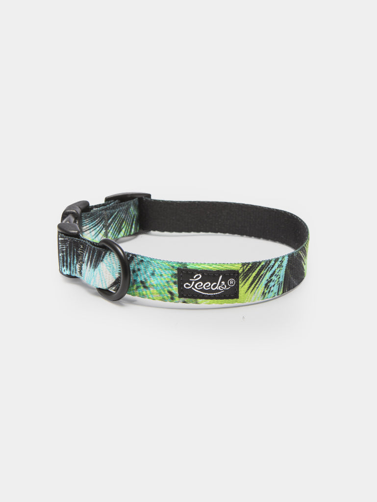 The Oasis Collar