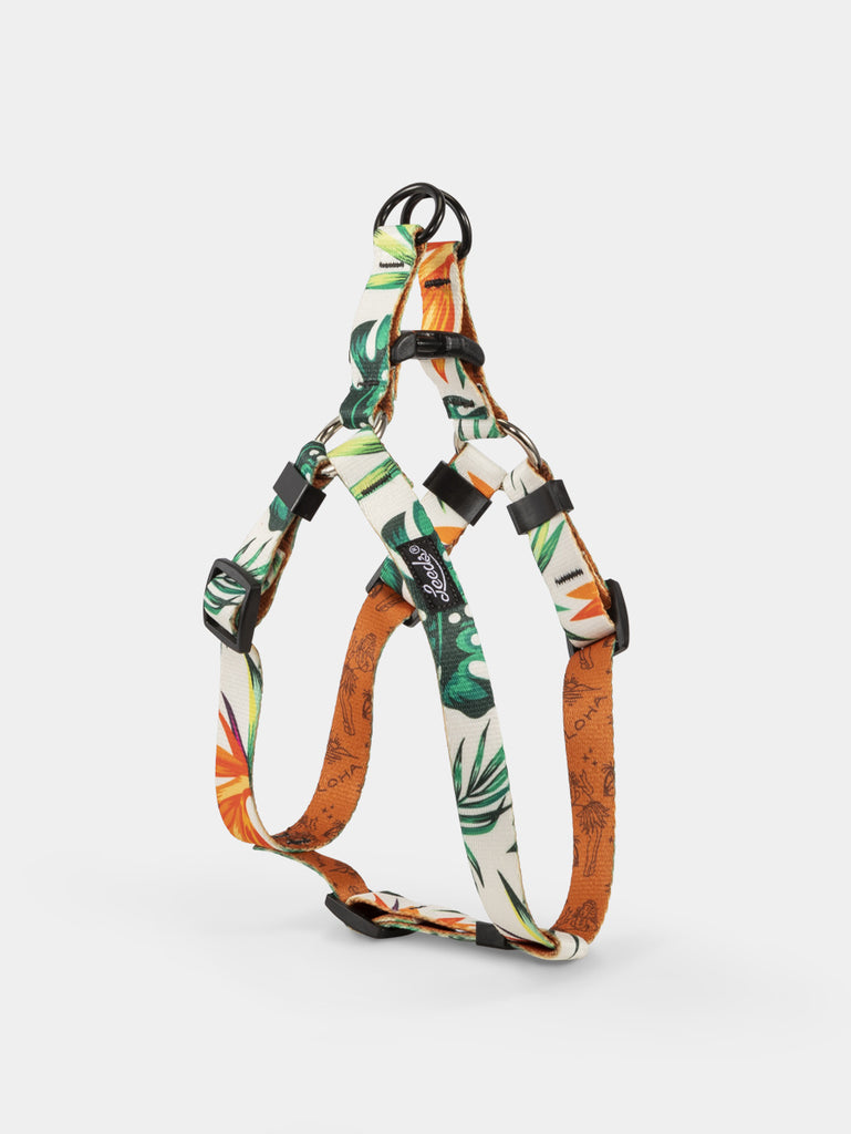 Tropicana Step In Harness
