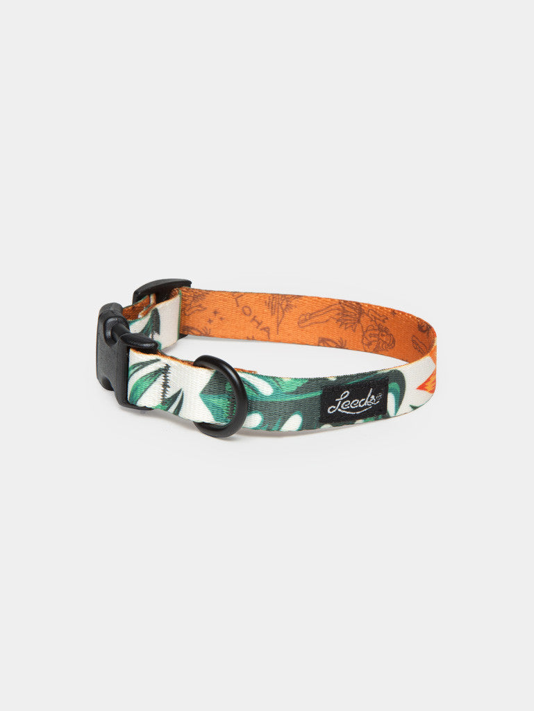 The Tropicana Collar