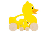 SunnyLife Push & Pull Toy Ducky