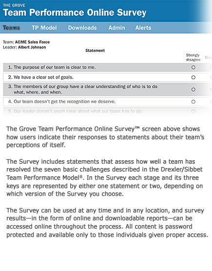 Team Performance Online Survey