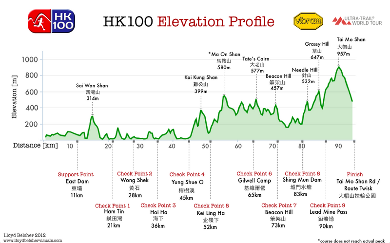 Race Tips for HK100