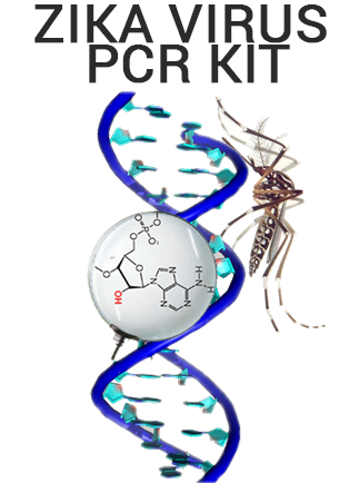 Zika Virus Realtime PCR kit - ready to use