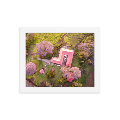 NEW! UPCOUNTRY BLOOM Framed photo poster