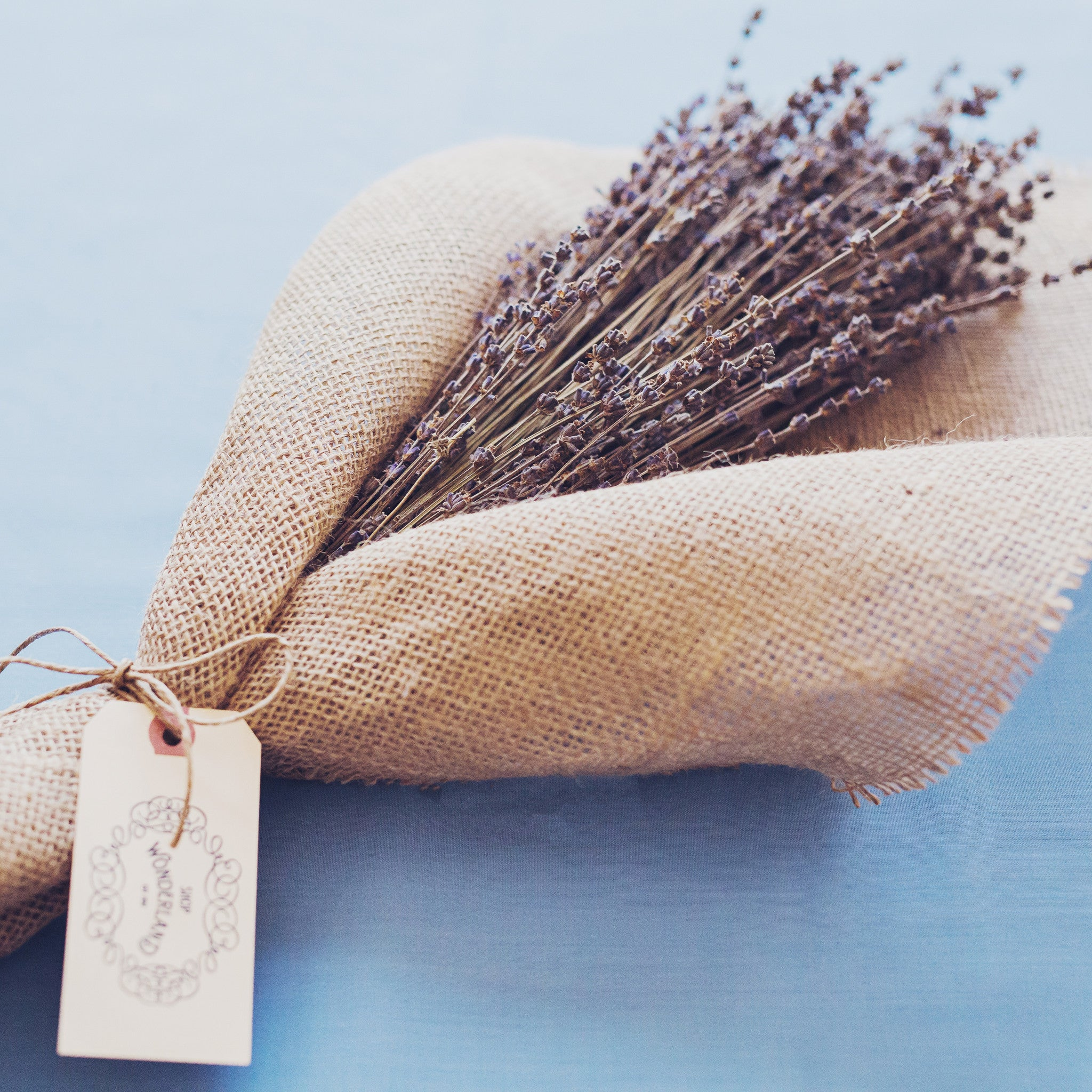 Bouquet / Dried Lavender